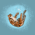 Bubble Tiger