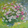 Bouquet of Daisies in the garden -  Etude