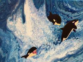 Orcas at play