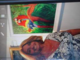 my loving parrot painting at exit it ion for the needed at gallery in DUNDEIN